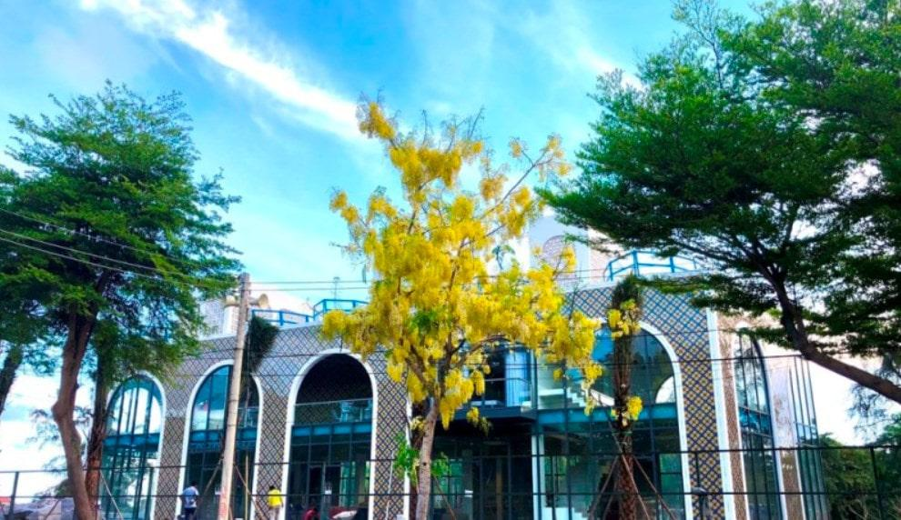 tien-do-xay-dung-du-an-charm-long-hai-resort-spa-thang-6-2020